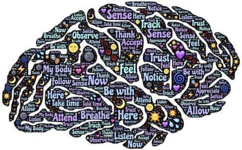 आपकी दिमागी उम्र क्या है - IQ Questions in Hindi